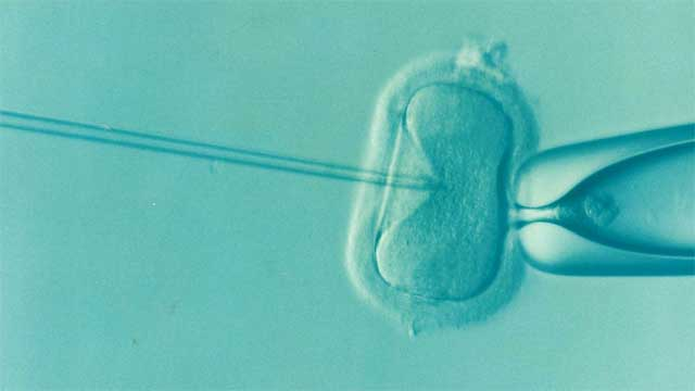 consejos para un nuevo embarazo tras haber tenido un aborto