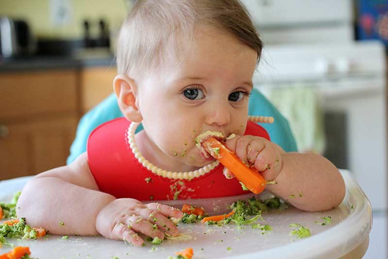 Baby Led Weaning: ventajas